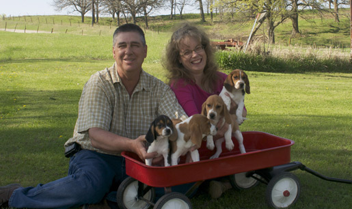 Roy and Lori with the puppies we raise
